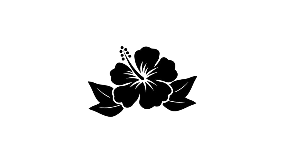 Beautiful Hibiscus Flower Clipart Png Black And White