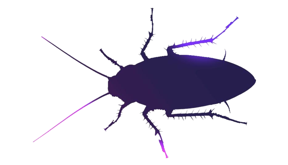Big Cockroach Png With Transparent Background