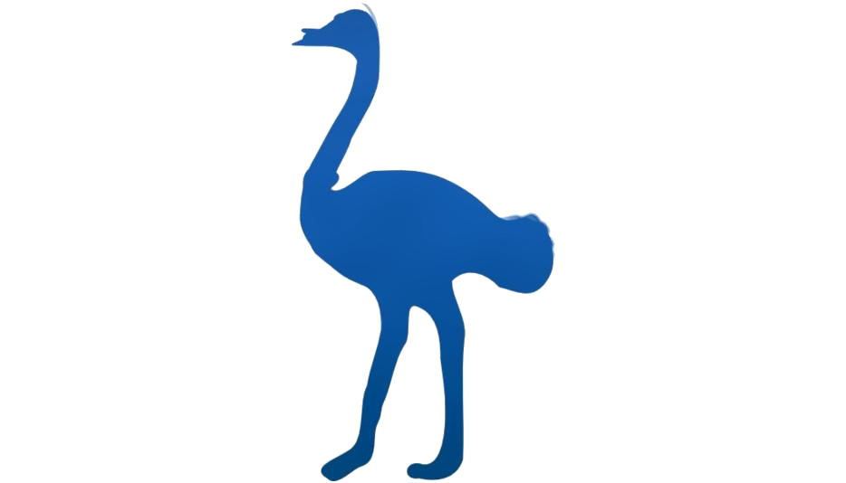 Colorful Ostrich Png Clipart