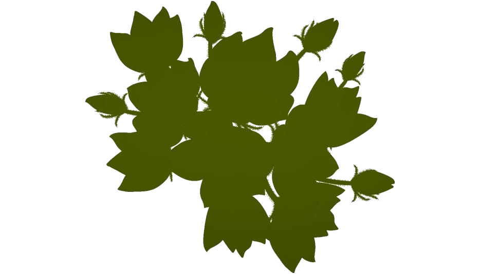 Columbine Flower Png Transparent Clipart For Download