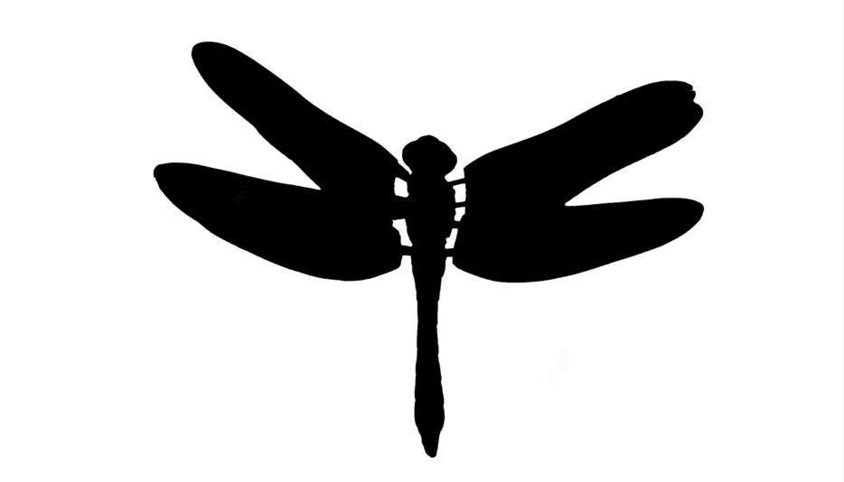 Dragonfly Png Image Clipart