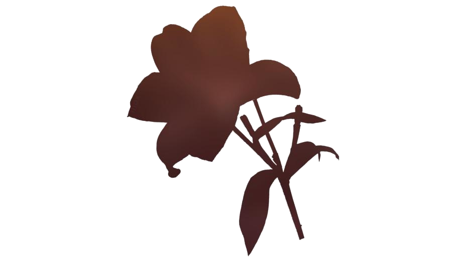 Easter Lily Flower Png Clipart