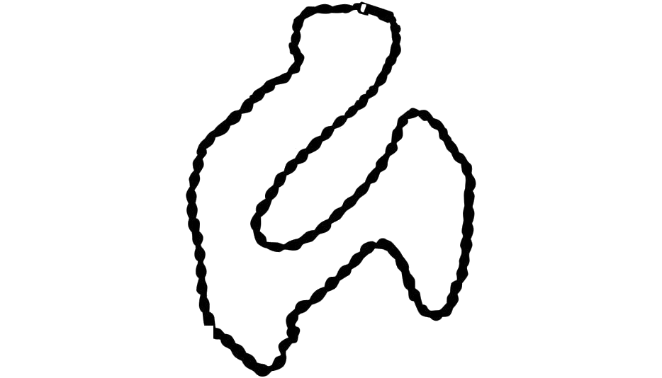 Rope Chain Necklace Png