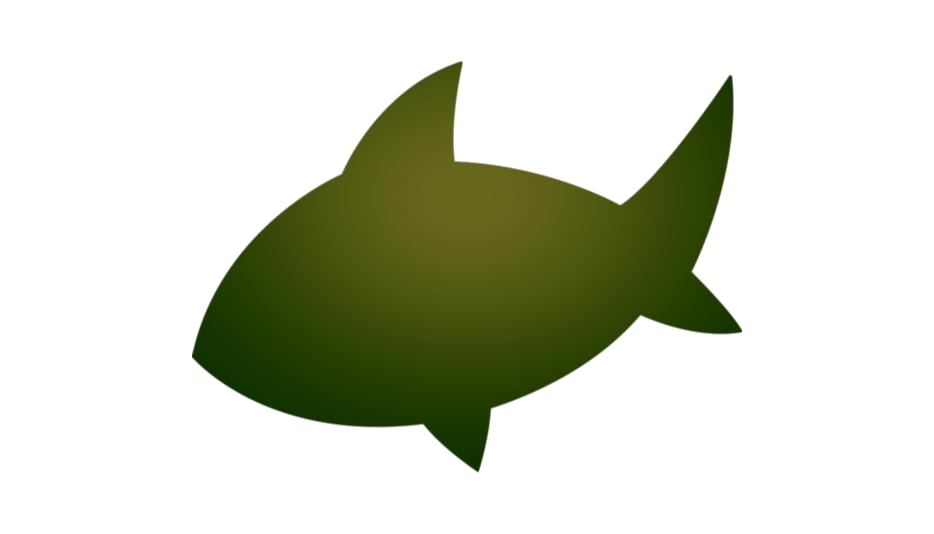 Shark Png Full Hd With Transparent Bg