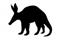 Transparent Two Tailed Clipart Image