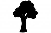 Transparent Tree With Leaves Png Cartoon