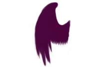 Arch Angel Wing Png Transparent Image For Download
