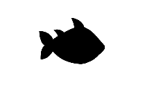 Bass Fish Png Hd Image With Transparent Background