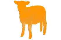 Baby Sheep Standing Png Free Clipart