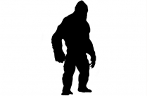 Best King Kong Png