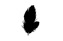 Bird Feather Png Image Clipart