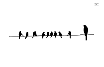 Birds On Electrical Wires Png Transparent Image For Download