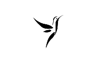 Birds Png Background Hd