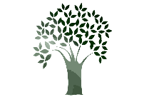 Fall Tree Png Free Transparent Clipart