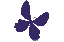 Butterfly Png Free Clipart