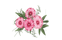 Png Flowers Transparent Image