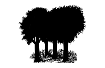 Trippy Tree Art Png Image With Transparent Background
