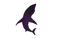 Transparent Dolphin Tattoo Clipart, Dolphin Tattoo Png Image