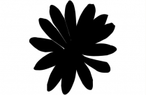 Daisy Png Free Transparent Clipart