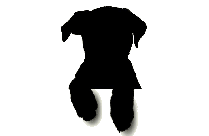 Transparent Cute Puppy Clipart Png