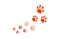 Dogs Footprint Clipart Png Black And White