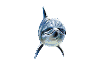 Mahi Fish Transparent PNG