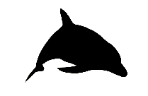 Dolphin Sketch Png
