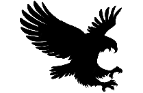 Eagle Png Image With Transparent Background