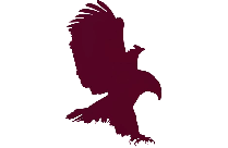 Harry Potter Eagle Hd Png Clipart Download