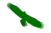 Transparent Eagle Wings Png For Free