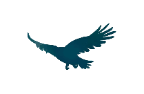 Transparent Eagle Fly Clipart, Eagle Fly Png Image