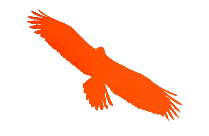 Eagle Hd Png Clipart Download