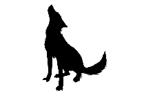 Hyena Png Image With Transparent Background