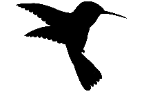 Hummingbird Clipart Png Black And White