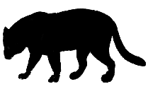 Transparent American Staffordshire Terriers Clipart Png