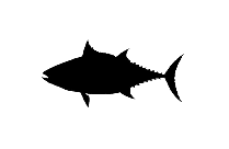 Longfin Png Clipart