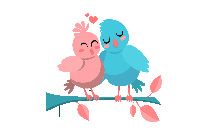 Love Birds Transparent Background