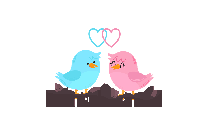 Love Birds PNG HD