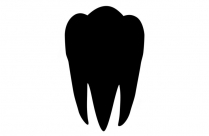 Molar Tooth Png Hd Transparent Image