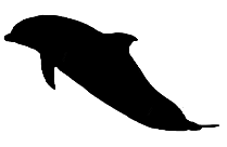 Ocean Fish Png Background Hd