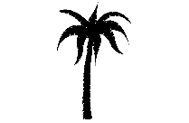 Large Tree Png Image Clipart