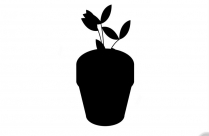 Plant Pot Sketch Png