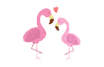 Love Birds Png, Vector, Clipart
