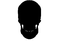 Skull Png Black And White