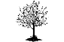 Spring Tree Png Transparent Clipart For Download