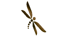 Teal Dragonfly Png Full Hd