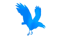 Colorful Bird Flying Painting Png Clipart