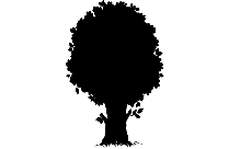 Dead Tree Pic Png Hd Image With Transparent Background