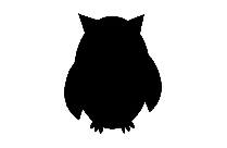 Transparent Bird Png For Free