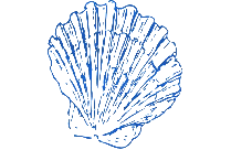 Transparent Blue Sea Shell Png Cartoon